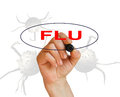 Flu Fotografia de Stock Royalty Free