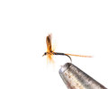 Fluffy fly fishing hook on white background Royalty Free Stock Photo