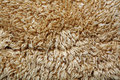 Fluffy fur texture Royalty Free Stock Photo