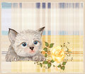 Fluffy kitten  with rose Stock Photography