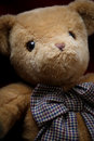 Fluffy teddy bear with big bow ribbon Stock Photography