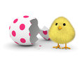 Fluffy yellow chick coming out easter egg shell d render Royalty Free Stock Photography