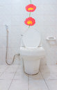The flush toilet for design or decorate project Royalty Free Stock Photography