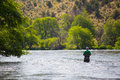 Fly fisherman casting on the deschutes river experienced fishing in oregon for fish while standing in water Stock Photo