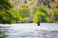 Fly fisherman casting on the deschutes river experienced fishing in oregon for fish while standing in water Royalty Free Stock Photo