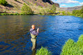 Fly fisherman deschutes river an experienced wades in the water while fishing the in oregon Royalty Free Stock Photo