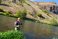 Fly fisherman deschutes river an experienced wades in the water while fishing the in oregon Royalty Free Stock Photos