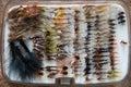 Fly fishing hooks case of various against white background Royalty Free Stock Image