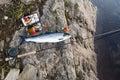 Fly fishing at river Kola atlantic salmon Royalty Free Stock Photo