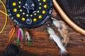 Fly fishing tackle Royalty Free Stock Photo