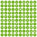 100 fly icons hexagon green