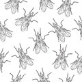 Fly insect seamless texture. Fly wallpaper, background. Doodle, sketch style. Modern design. Vector illustration Royalty Free Stock Photo