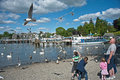 Fly past over Lake Windermere Royalty Free Stock Photos