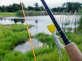 Fly rod at a pond with large mouth bass frog popper over looking Royalty Free Stock Photography