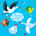 Flying Birds. Cartoon Vector Illustration. Royalty Free Stock Photo