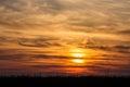 Flying birds on dramatic sunset background Royalty Free Stock Photo