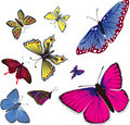 Flying Butterflys Royalty Free Stock Images