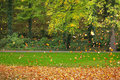 Flying colorful leaves in autumn in a park Royalty Free Stock Image