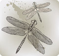 Flying dragonfly, hand-drawing. Vector illustratio Royalty Free Stock Photo