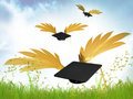 Flying graduation caps illustration Stock Photos