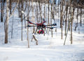 Flying hexacopter in winter forest Royalty Free Stock Photo