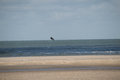 Flying kite surfer at deserted beach Royalty Free Stock Photo