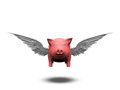 Flying pig isolated on white Stock Photography