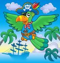 Flying pirate parrot with boat Royalty Free Stock Photo