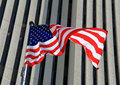 Flying Proudly Stock Photo