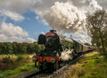 The Flying Scotsman coming around a curve on a slight incline Royalty Free Stock Photo
