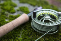 Flyrod on moss green resting soft Stock Images