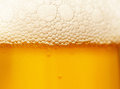 Foam on beer Royalty Free Stock Photo