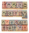 Focus clarity and concentration words isolated in letterpress wood type Royalty Free Stock Photos