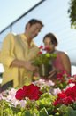 Focus On Flower Plants With Couple In Background Royalty Free Stock Photo