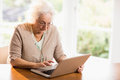 Focused senior woman using laptop Royalty Free Stock Photo