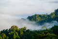 The fog at Khao Phanoen Thung, Kaeng Krachan National Park in Th