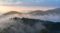 Fog over mountain and forest on sunrise at Da Lat, Vietnam Royalty Free Stock Photo