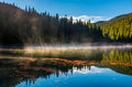 Fog rise from the forest lake in mountains Royalty Free Stock Photo