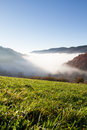 Fog in valley Stock Photography