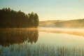 A foggy August morning on a forest lake. Southern Finland Royalty Free Stock Photo
