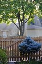 Autumn morning in Mount Prospect IL, USA. Residential district. Royalty Free Stock Photo