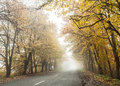 Foggy autumn road countryside perspective Stock Photo