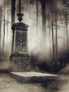 Foggy cemetery in the woods