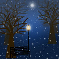 Foggy Christmas Winter Park Scene with Snowflakes Royalty Free Stock Image