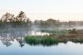 Foggy dawn on a lake in bog Stock Image
