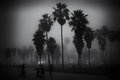 Foggy day on venice beach los angeles california Stock Image