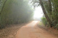 Foggy dirt road Royalty Free Stock Photo