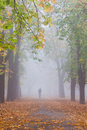 Foggy fall with lonely man Stock Photo
