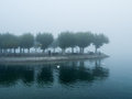 Foggy landscape in the middle of a lake Stock Image