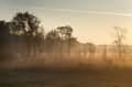 Foggy landscape plain with fence on morning Royalty Free Stock Images